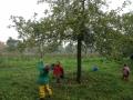 Kinder_mit_Apfelpfluecker_CR_Uve_Haussig