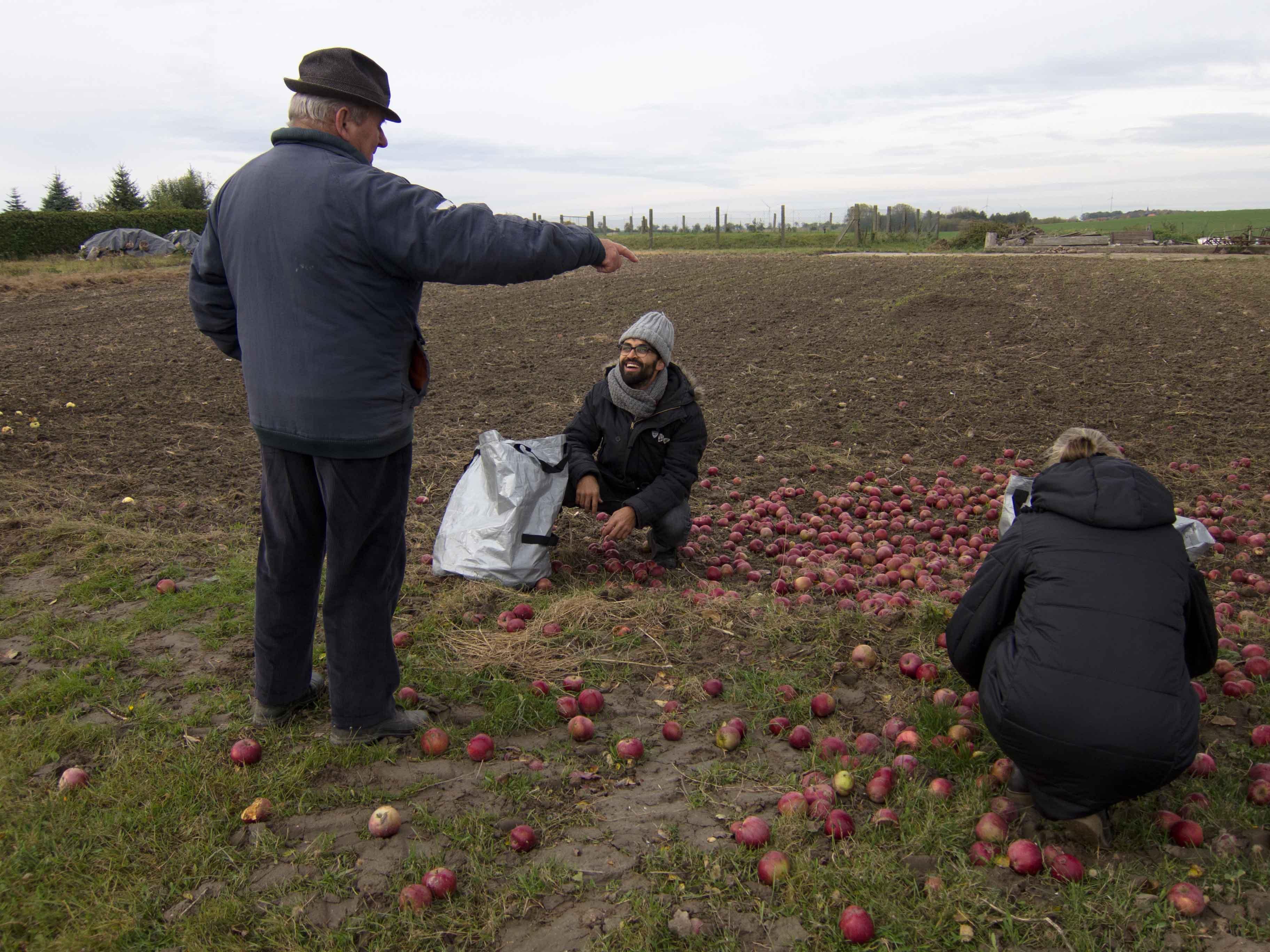 Apfelbaumbesitzer_mit_Erntern_CR_Uve_Haussig