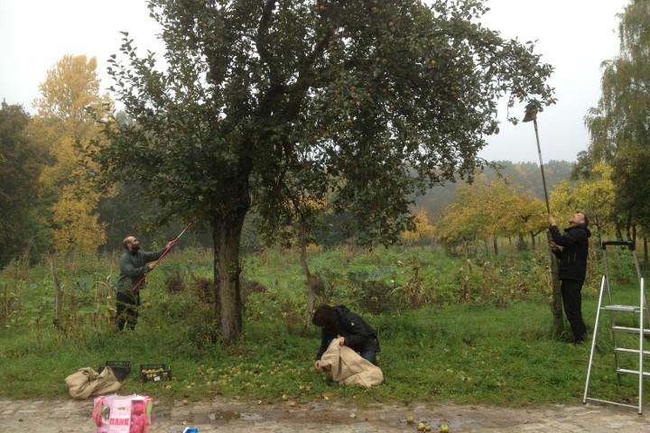 ApfelinHand-Navbar